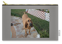 Waiting For Dinner Carry-all Pouch by Val Oconnor
