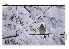 Waiting For Mr. C Carry-all Pouch by Shari Jardina