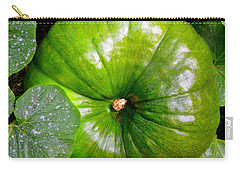 Six More Weeks Carry-all Pouch by Antonia Citrino
