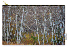 Carry-all Pouch featuring the photograph Walk In The Woods by James BO Insogna