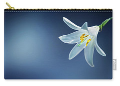 Wallpaper Carry-all Pouch by Bess Hamiti