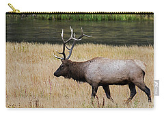 Wandering Elk Carry-all Pouch