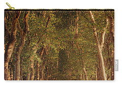 Warm French Tree Lined Country Lane Carry-all Pouch