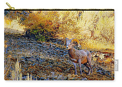 Warm Light Carry-all Pouch by Steve Warnstaff
