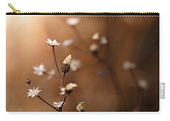 Carry-all Pouch featuring the photograph Warmed By Light by Shane Holsclaw
