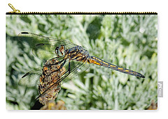 Warming-up - Darner Dragonfly Carry-all Pouch