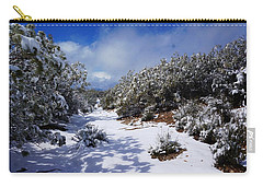 Warner Springs Snow Carry-all Pouch