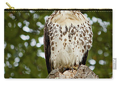 Watchful Eye Carry-all Pouch by Jim Gillen