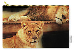 Watchful Eye Carry-all Pouch by Kim Henderson