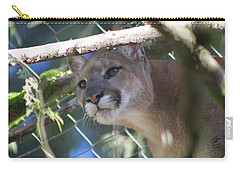 Carry-all Pouch featuring the photograph Watchful Eyes by Laddie Halupa