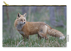 Carry-all Pouch featuring the photograph Watchful by Gary Lengyel