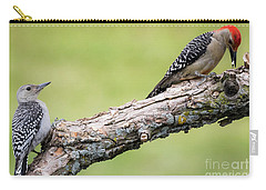 Carry-all Pouch featuring the photograph Watching And Learning by Ricky L Jones