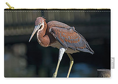 Watching Me Carry-all Pouch by Kenneth Albin
