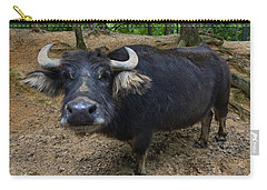 Water Buffalo On Dry Land Carry-all Pouch by Chris Flees
