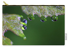Carry-all Pouch featuring the photograph Water Droplet IIi by Richard Rizzo
