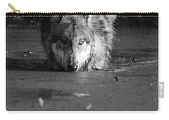 Carry-all Pouch featuring the photograph Water Wolf I by Shari Jardina