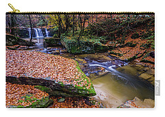 Waterfall-3 Carry-all Pouch