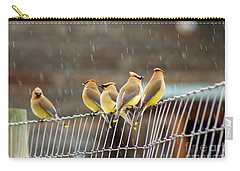 Carry-all Pouch featuring the photograph Waxwings In The Rain by Sean Griffin