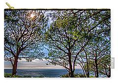 Wayfarer's  Ocean View Carry-all Pouch