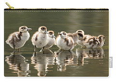 Gosling Photographs Carry-All Pouches