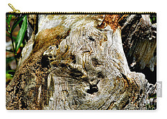 Weathered Wood Carry-all Pouch by Debbie Portwood