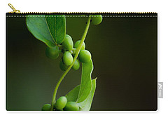 Weaving Vines Carry-all Pouch by Shelby  Young