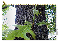Carry-all Pouch featuring the photograph Wekiwa Springs State Park Oakleaf Cluster by Chris Mercer