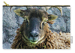Welsh Ram Carry-all Pouch