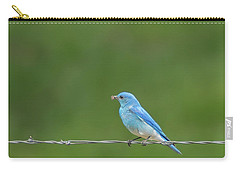 Western Bluebird Carry-all Pouch by Brenda Jacobs