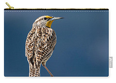 Western Meadowlark Carry-all Pouch by Dawn Key