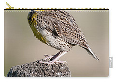 Carry-all Pouch featuring the photograph Western Meadowlark by Gary Lengyel