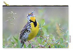 Western Meadowlark Carry-all Pouch by Jack Bell