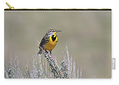 Western Meadowlark Carry-all Pouch by Michael Morse