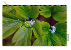 Wet Bleeding Heart Leaves Carry-all Pouch by Brent L Ander