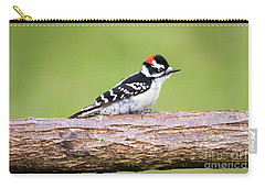 Carry-all Pouch featuring the photograph Wet Downy Woodpecker  by Ricky L Jones