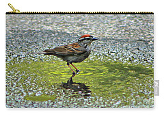 Carry-all Pouch featuring the photograph Wet Feathers by Barbara S Nickerson