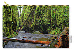 Wet Trail Carry-all Pouch by Jonathan Davison
