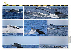 Whale Action Carry-all Pouch