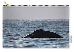 Whale Fin Carry-all Pouch by Suzanne Luft