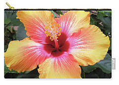 What A Beauty Carry-all Pouch by Vickie G Buccini
