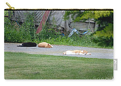 Carry-all Pouch featuring the photograph What A Day by Donald C Morgan