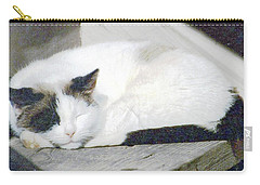 What Do Cats Dream Of #2 Carry-all Pouch