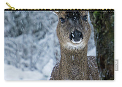 Carry-all Pouch featuring the photograph What Is This - 365-280 by Inge Riis McDonald