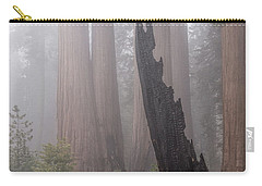 Carry-all Pouch featuring the photograph What Lurks In The Forest by Peggy Hughes