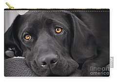 When Dogs Die Carry-all Pouch