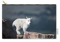 Carry-all Pouch featuring the photograph Where's Mom? by Gary Lengyel