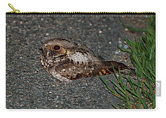 Whip-poor-will Carry-all Pouch by Nancy Landry