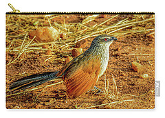 White-browed Coucal Carry-all Pouch