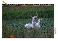 White Bucks Carry-all Pouch