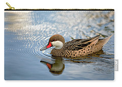 White-cheeked Pintail Carry-all Pouch